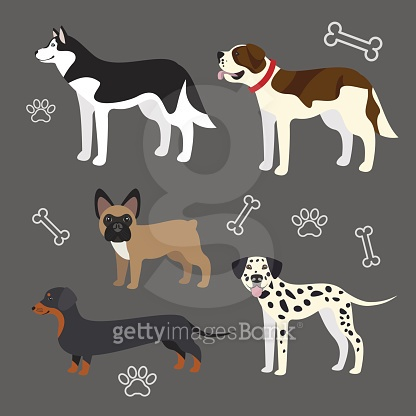 Vector funny dogs