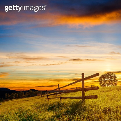 Wooden Fence - Beautiful Meadow Blanketed with Wildflowers