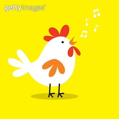 Cute rooster chicken to singing