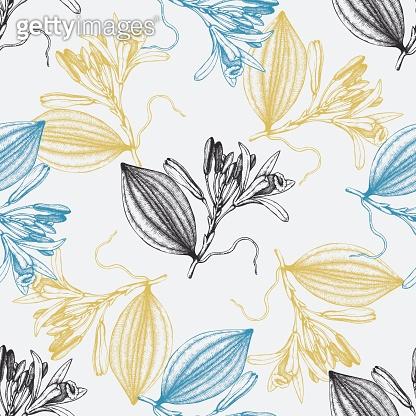 Vanilla_pattern_1