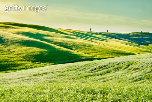 Stunning tuscan landscape, with green grass and rolling hills