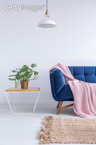 Beautiful room with blue sofa