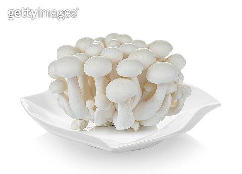 White beech mushrooms, Shimeji mushroom, Edible mushroom in plate on white background