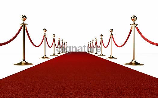 Red Carpet Event Concept