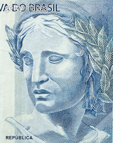 Head of the Republic on the fragment banknotes of the brazilian real close up