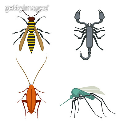 Collection of icons of colorful bugs on vector illustration