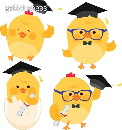 Cute chick students with graduation hats.