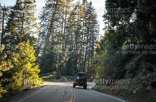 Scenic forest road in Sequoia National Park, California, USA