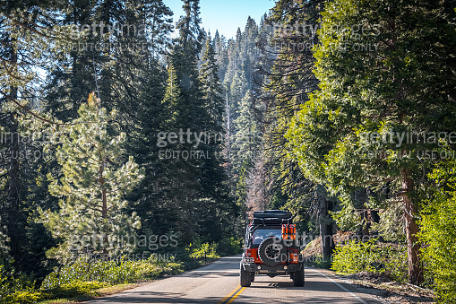 Summer in the Sequoia National Park, California, USA. Car trip on the US natural parks