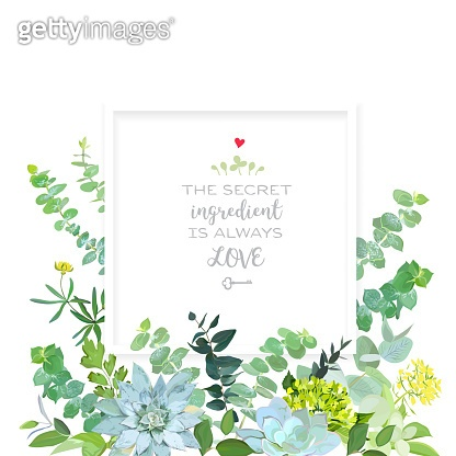 Herbal mix square vector frame box