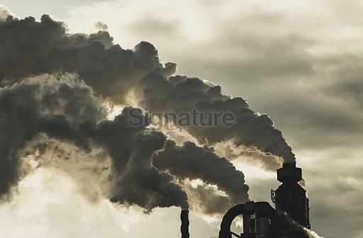 Pulp Mill Pollution