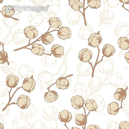 Cotton plant graphic beige color seamless pattern sketch illustration vector