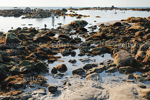 View of blue sea and stones and beach at sunset