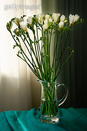 Flower still life with spring white freeesia in the vase on the table