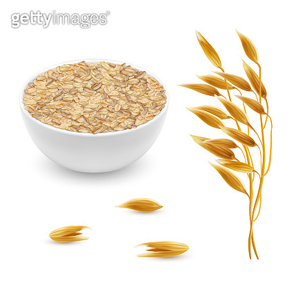 Vector 3d realistic oat ears, grains, bowl