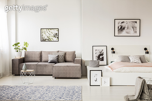 Real photo of a single person, open space apartment interior with a gray corner sofa in the living room and a white bed with pink blanket in the bedroom