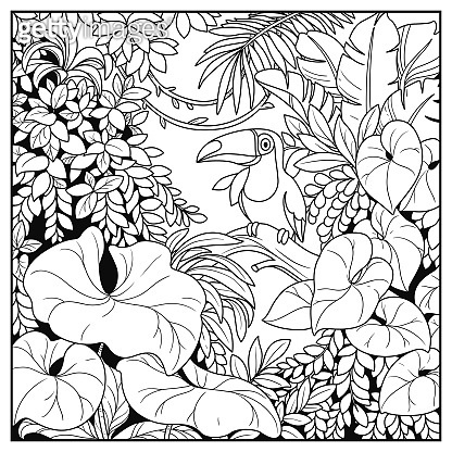 Wild jungle with toucan bird sitting on a log black contour line drawing for coloring on a white background