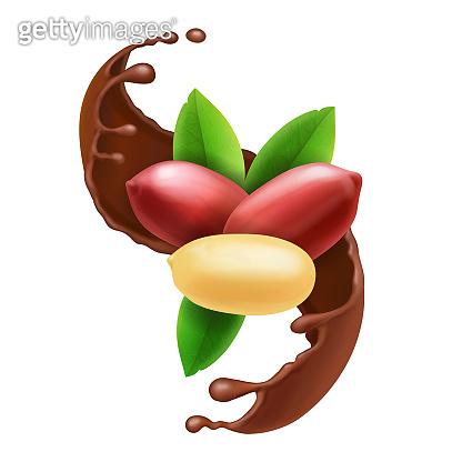 Peanut nuts in chocolate splash.