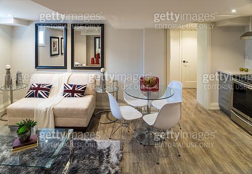 Renovated Basement Apartment