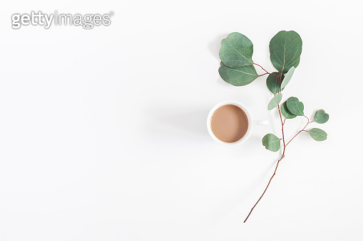 Cup of coffee, eucalyptus branch. Flat lay, top view