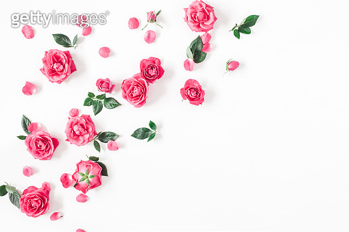 Pink rose flowers on white background. Flat lay, top view