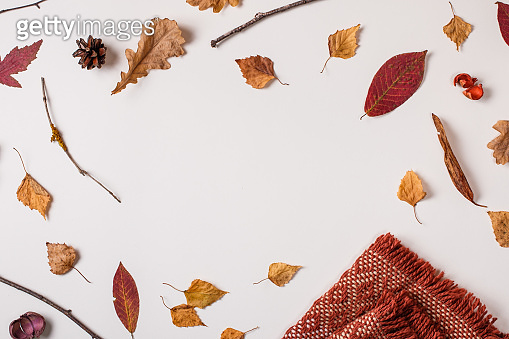 Autumn leaves, plaid and space for text