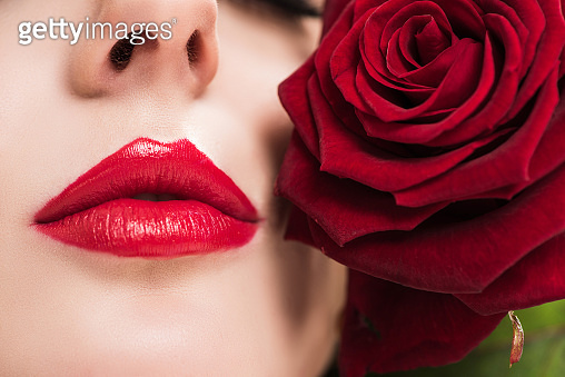 cropped image of sensual girl touching face with red rose, valentines day concept