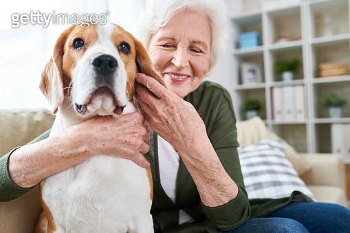 Happy Senior Woman Hugging Dog