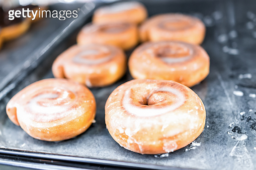 Plain glazed sugar cinnamon roll donuts closeup on bakery tray, deep fried vanilla, delicious tasty