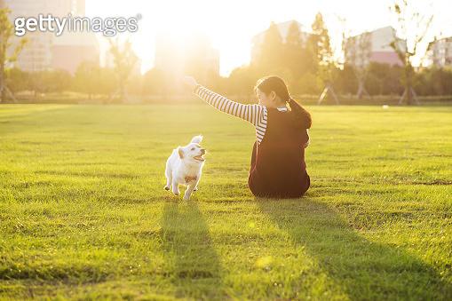 Dog and hostess, park background