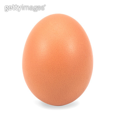 raw organic egg isolated on white background. standing in vertical for show product. clipping path.