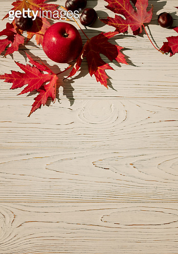 Autumn colors. Red maple leaves on gray wooden background. Selective focus.
