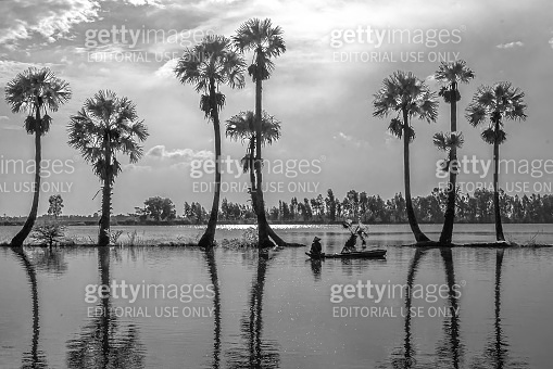 Unidentified fishers spread a net to catch fish in a lake