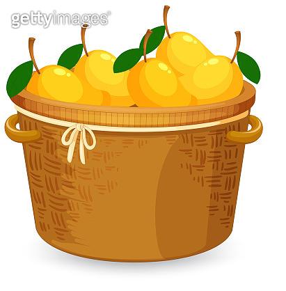 A basket of mango