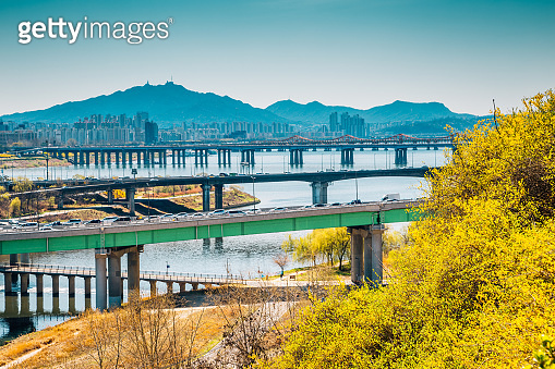 View of Seoul city and Han river with forsythia flower from Eungbongsan mountain