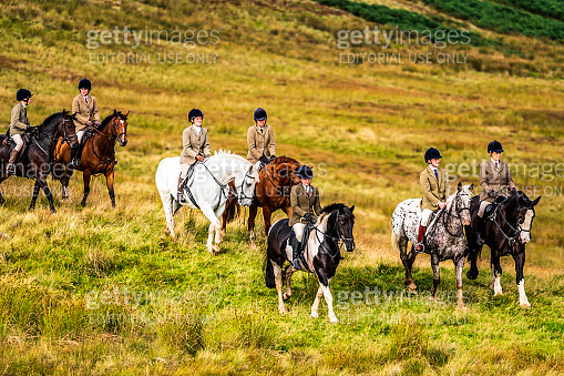 Autumn Hunting, Hawick, Scottish Borders, UK