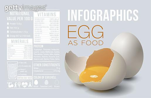 Egg infographics. Egg as food. Design template, vitamins and minerals. Benefit of egg. Vector illustration