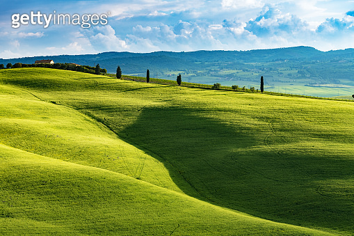 Sunny afternoon in Tuscany, Val d'Orcia, Italy
