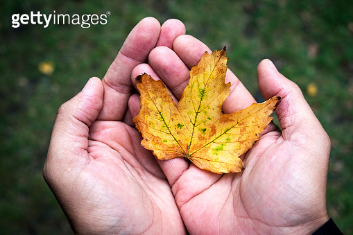 man with a dry leaf in his hand