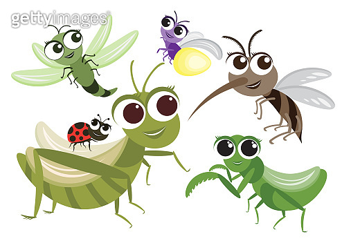 Set of Cute Insects Cartoon Character,Vector insects design,mosquito,Grasshopper,Dragonfly,Mantis,Firefly and Ladybug on White Isolated background.