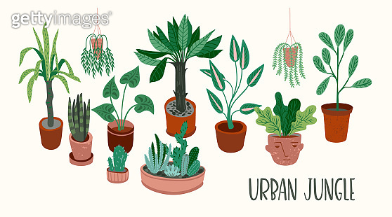 Urban Jungle. Vector seamless pattern with trendy home decor.