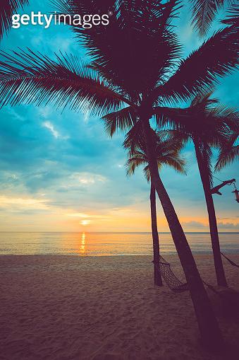 Silhouette of tropical beach