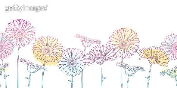 Vector horizontal seamless pattern with outline Gerbera or Gerber flower in pastel pink and orange on the white background.
