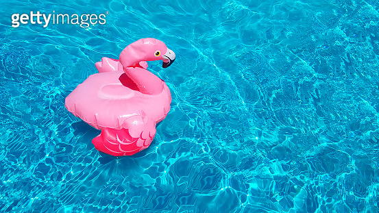 Template for an invitation to a summer party near the pool. Inflatable pink flamingo swims in clear blue azure water. Place for text, copy space. Toy for a poster, banner or flyer.