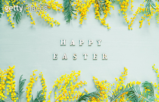 Easter background. Mimosa flowers and festive inscription Happy Easter, festive Easter card