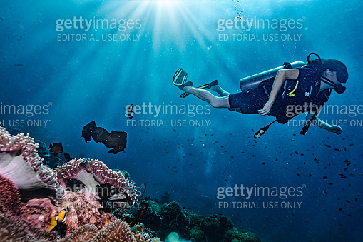 Woman eco tourist Scuba Diving on vacation over coral reef