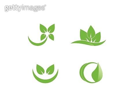 Eco Tree Leaf Logo Template