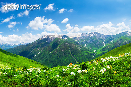 Bright mountain landscape with green valley and blue sky in Georgia.