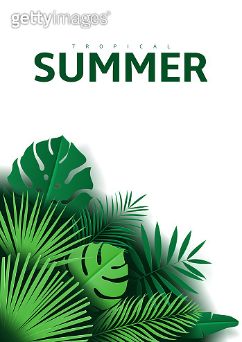 Tropical summer background with leaves