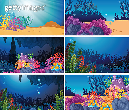 Set of underwater scene